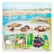 Dessous de plat Baie de Somme