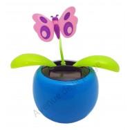 Plante solaire avec papillon qui se balance