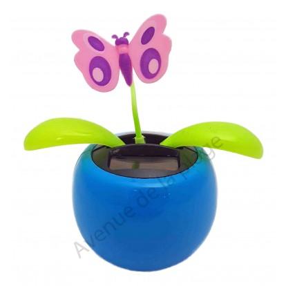 Plante solaire avec papillon qui se balance A