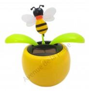 Plante solaire avec abeille qui se balance