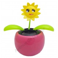 Plante solaire avec soleil qui se balance