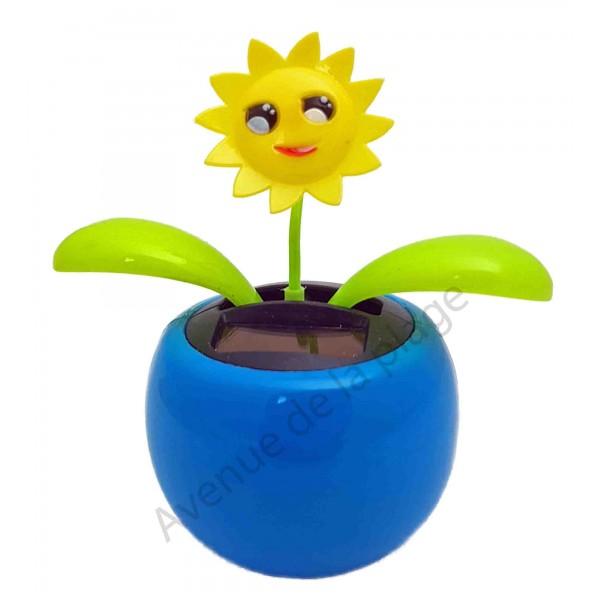 Plante solaire avec soleil qui se balance - Plante qui aime le soleil ...