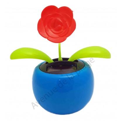 Fleur rose rouge solaire qui se balance