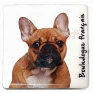 Magnet Bouledogue français marron