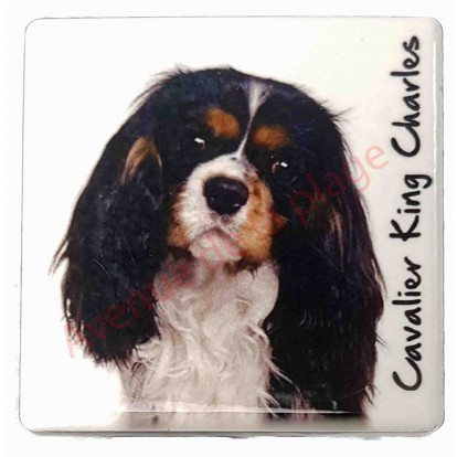 magnet cavalier king charles tricolore pas cher magnet chien discount. Black Bedroom Furniture Sets. Home Design Ideas