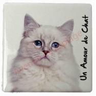 Magnet Chat blanc