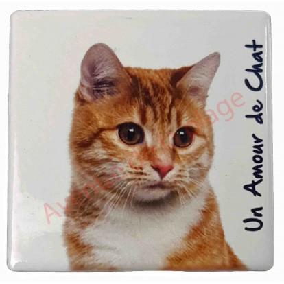 magnet chat roux pas cher aimant pour frigo chat. Black Bedroom Furniture Sets. Home Design Ideas