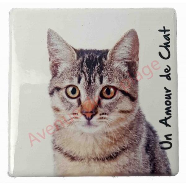 magnet chat tigr pas cher aimant pour frigo chat. Black Bedroom Furniture Sets. Home Design Ideas