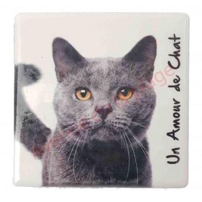Magnet Chat gris