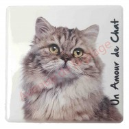 Magnet Chat Maine Coon