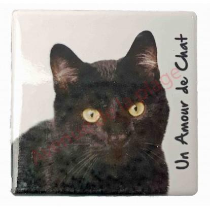 Magnet Chat noir
